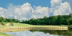 Black Bear Golf Course